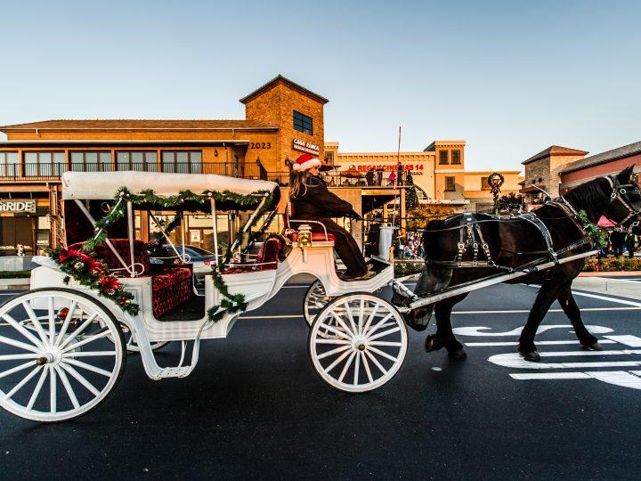 Valentine's Day Carriage Rides