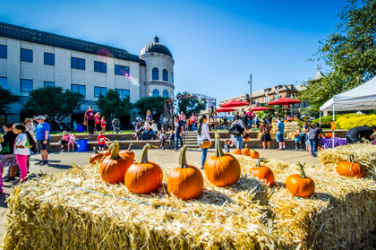 Fall Festival and Carnival 2017